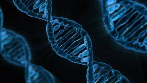 CRISPR/Cas9 : da sistema immunitario batterico a bisturi genetico