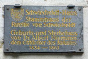 """Lo """"stupefacente"""" anniversario della morte di Albert Niemann"""