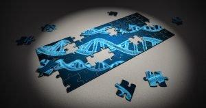 Quando il DNA fa Blackjack: i 21 amminoacidi