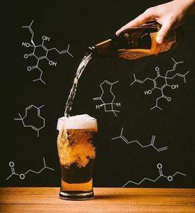 La chimica della birra